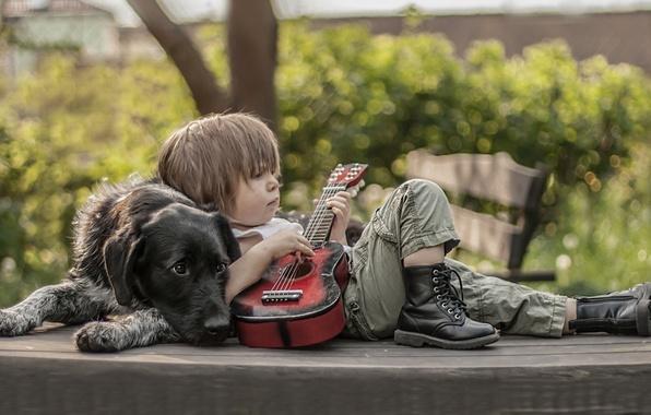Картинка гитара, собака, мальчик, ботинки, друзья