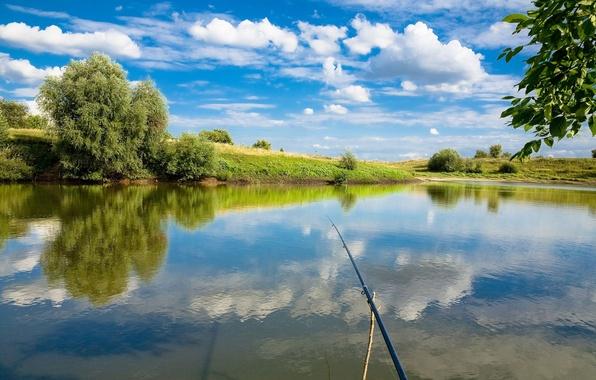 Картинка рыбалка, удочка, first person view