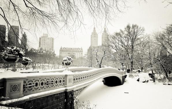 Картинка зима, снег, деревья, природа, город, Нью-Йорк, USA, США, Manhattan, NYC, New York City, Центральный парк, …