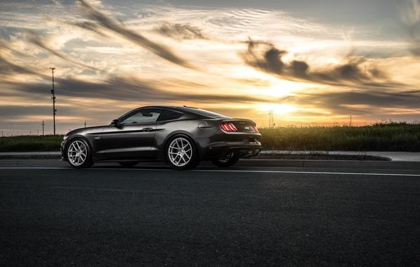 Картинка Mustang, Ford, Muscle, Car, Sunset, Wheels, Avant, Rear, 2015, Garde