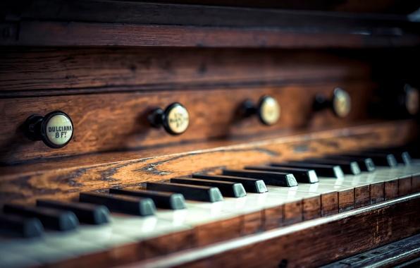 Картинка макро, клавиши, церковный орган, church organ