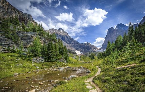 Картинка небо, трава, вода, облака, деревья, горы, камни, скалы, долина, Канада, Альберта, Banff National Park, тропинка, …