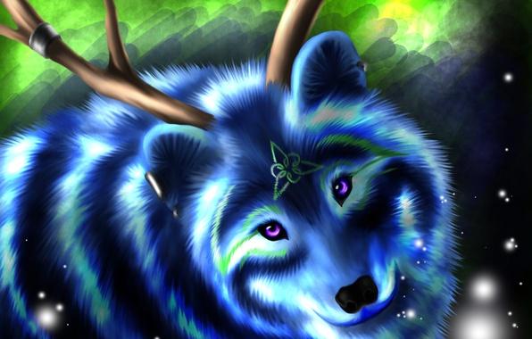 Картинка взгляд, морда, синий, животное, волк, шерсть, символ, рога