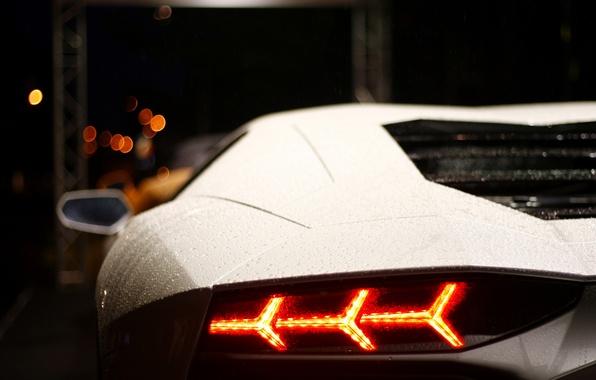 Картинка белый, свет, дождь, Lamborghini, фара, light, white, rain, aventador, lp700-4, ламборгини, авентадор, back