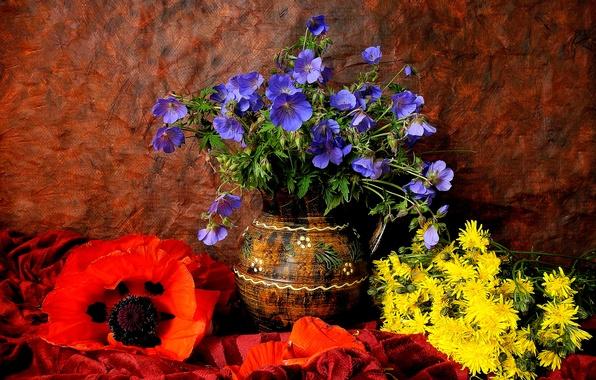 Картинка одуванчик, мак, лепестки, ваза, кувшин, натюрморт