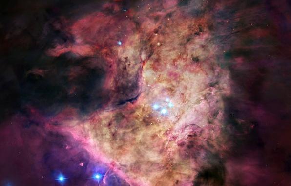 Картинка звезды, туманность, пыль, газ, созвездие, Орион