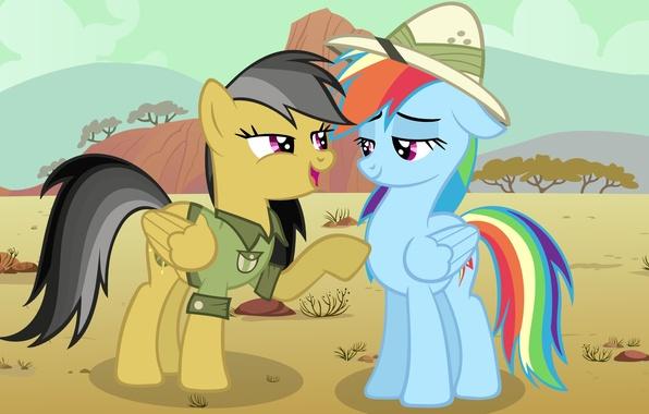 Картинка Rainbow Dash, My little pony, MLP, Daring Do, MLP:FIM