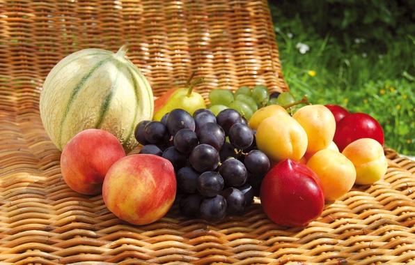 Картинка лето, ягоды, еда, виноград, груша, фрукты, солнечно, персики, дыня, абрикосы, алыча, нектарины