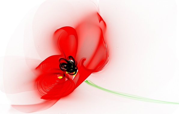 Картинка цветок, линии, обои, мак, лепестки, стебель