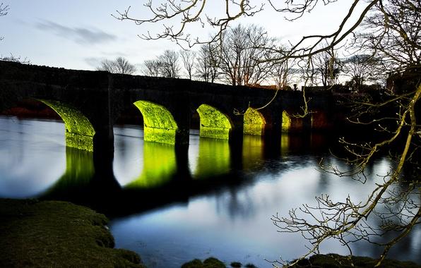 Картинка закат, мост, река, дерево, ветка, вечер, подсветка, арки
