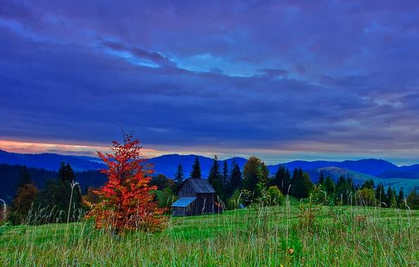 Картинка осень, небо, облака, деревья, горы, тучи, природа, вечер, склон, hdr, румыния