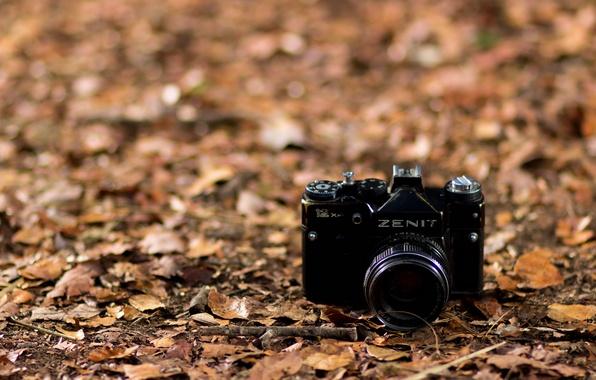 Картинка листья, фон, камера, Zenit