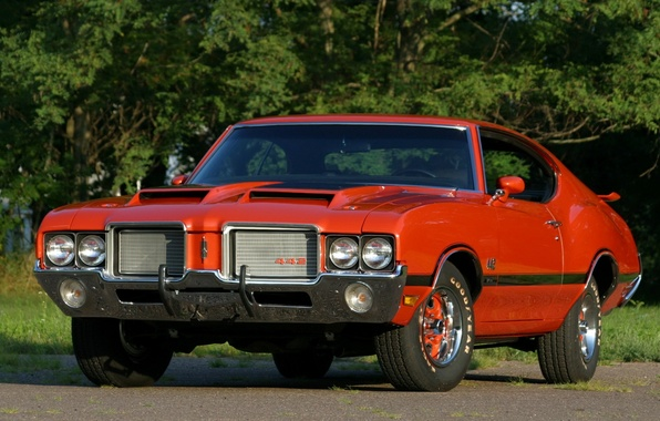 Картинка деревья, оранжевый, фон, купе, Coupe, передок, Muscle car, 1972, Hardtop, Мускул кар, 442, Oldsmobile, Олдсмобиль, …