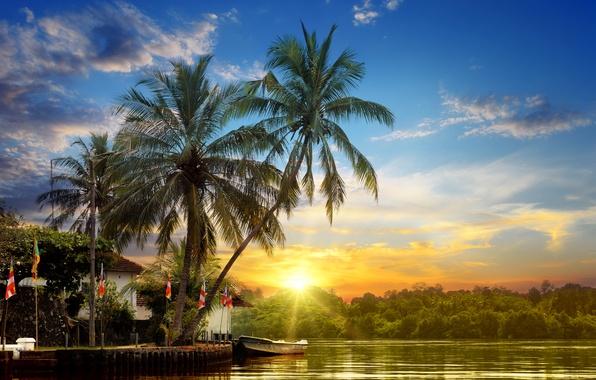 Картинка лес, небо, солнце, облака, лучи, закат, тропики, река, пальмы, берег, лодка, причал