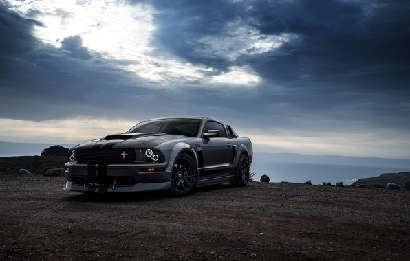 Картинка Mustang, Ford, Muscle, Car, Front, Grey, San Francisco, Boss, Collection, Aristo, 281