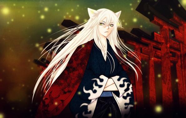 Kamisama hajimemashita очень приятно бог томоэ