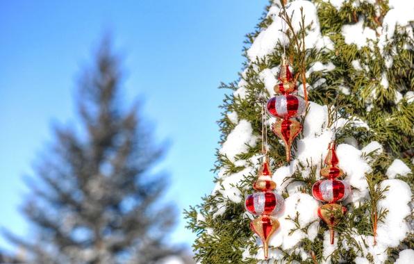 Картинка зима, небо, снег, дерево, игрушки, новый год, рождество, украшение