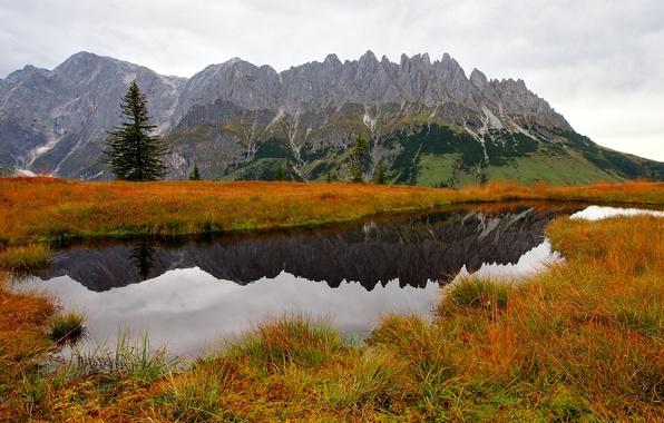 Картинка осень, трава, вода, деревья, горы, природа, озеро, ель