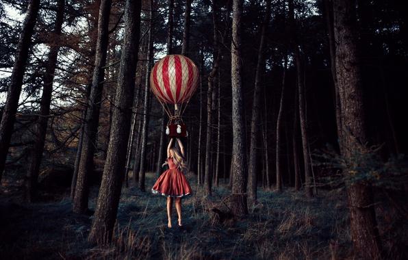 Картинка лес, деревья, воздушный шар, ситуация, девочка, полёт