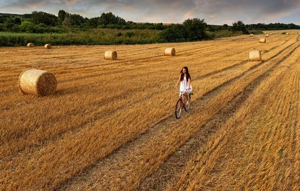 Картинка дорога, поле, небо, девушка, облака, велосипед, сено, girl, прогулка, sky, field, clouds, walk, hay, road …