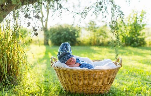 Картинка корзина, сон, мальчик, шапочка, младенец, спящий