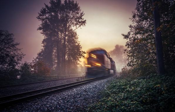 Картинка туман, поезд, утро