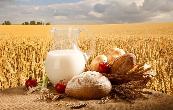 Картинка пшеница, поле, небо, корзина, молоко, лук, хлеб, кувшин, помидоры, булочки