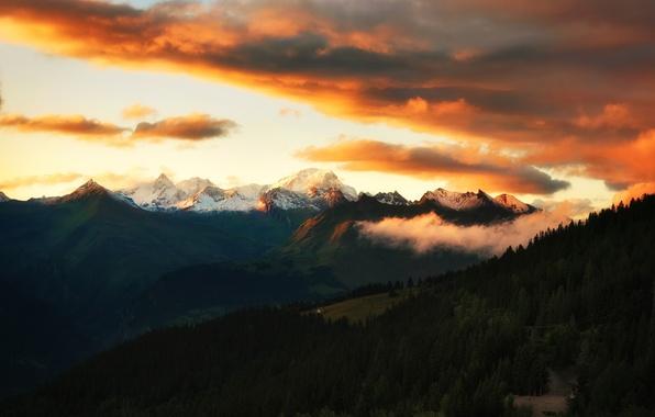 Картинка небо, облака, закат, горы, леса, альпы, alps