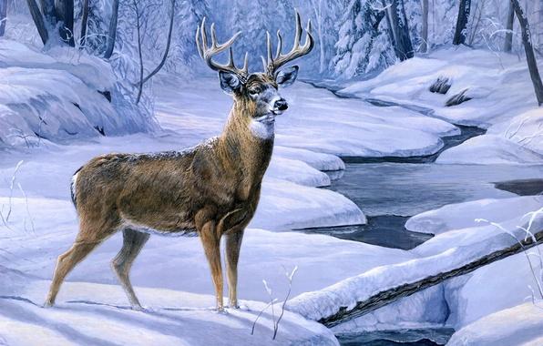 Картинка зима, лес, снег, ручей, олень, forest, живопись, winter, snow, animal, painting, deer, November snow, creek, …