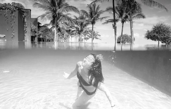 Картинка лето, девушка, бассейн, бикини, гостиница, кокосовые пальмы