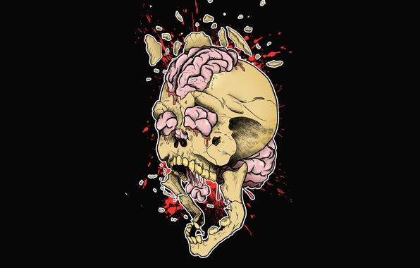 Картинка взрыв, брызги, осколки, креатив, рисунок, череп, арт, мозг, черный фон, принт, разрыв, print