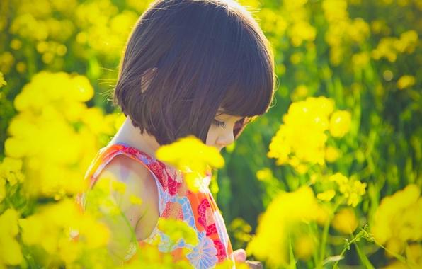 Картинка солнце, цветы, желтый, природа, дети, фон, ситуации, обои, настроения, растение, платье, брюнетка, девочка, цветочки, wallpapers