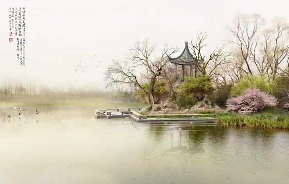 Картинка туман, озеро, утро, причал