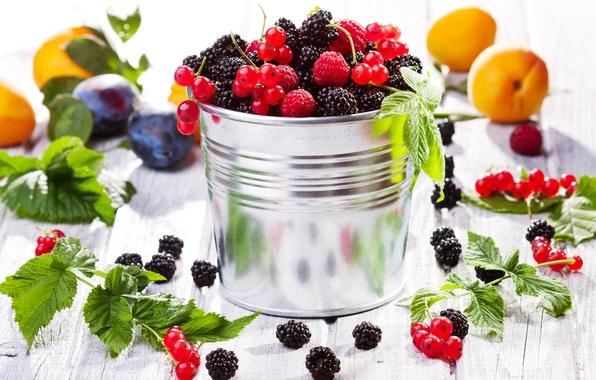 Картинка ягоды, малина, фрукты, сливы, смородина, ежевика, абрикосы, fruits, berries, bucket