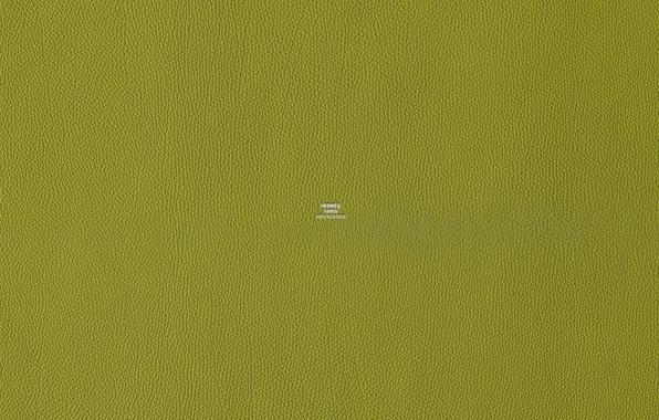 Картинка зеленый, цвет, текстура, кожа, Hermes