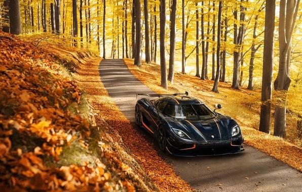 Картинка осень, фон, Koenigsegg, суперкар, передок, Agera, гиперкар, Агера, Кёнигсегг