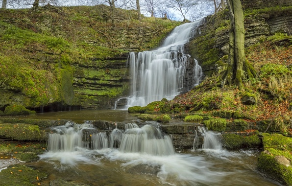 Картинка осень, Англия, водопад, каскад, England, Северный Йоркшир, Yorkshire Dales, North Yorkshire, Йоркшир-Дейлс, Scaleber Force
