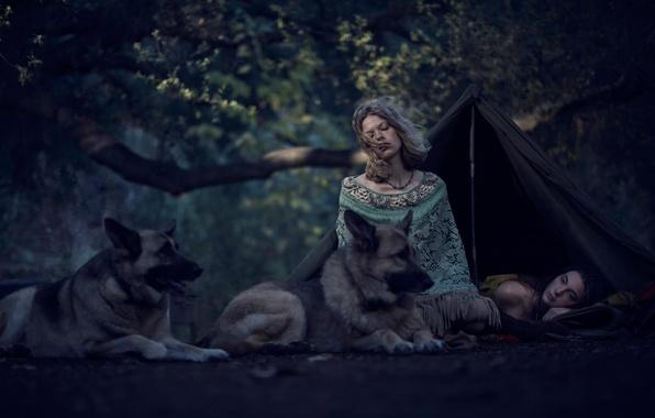 Лес палатка девушка фото 294-43