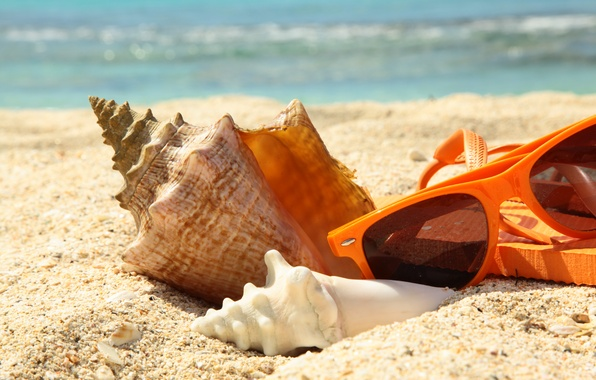Картинка песок, море, пляж, лето, отдых, ракушка, очки, summer, beach, sun, glasses, vacation, accessories