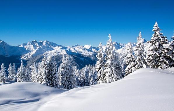 Картинка зима, небо, снег, деревья, пейзаж, горы, природа, голубое, ели, ёлки