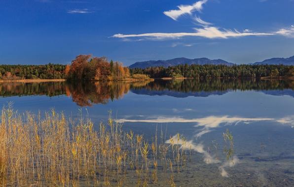 Картинка осень, лес, горы, озеро, отражение, Германия, Бавария, Germany, Bavaria, Oster Lakes