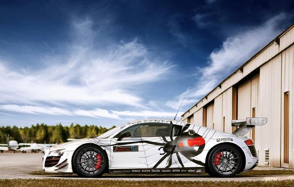 Картинка паук, спойлер, Audi R8, Race, диски, photography, tuning, Spider, Nikita Nike, srortcar