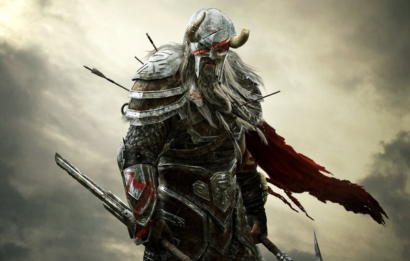 Картинка небо, взгляд, тучи, воин, рога, шлем, броня, борода, стрелы, Bethesda Softworks, ZeniMax Online Studios, Zenimax …