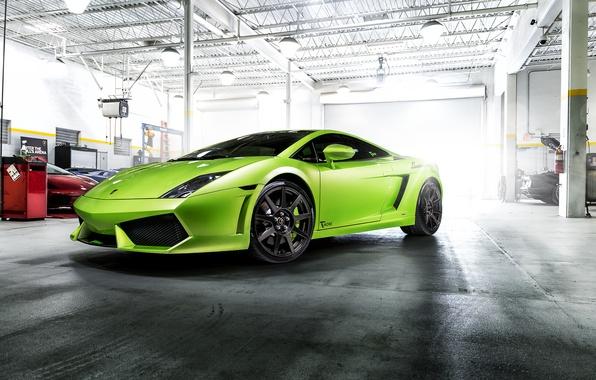 Картинка Lamborghini, Gallardo, Green