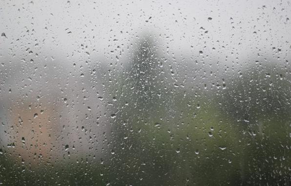 Картинка лето, стекло, вода, капли, поверхность, отражение, дождь, после дождя
