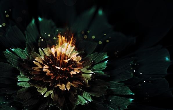 Картинка цветок, лучи, свет, абстракция, сияние, графика, свечение, боке