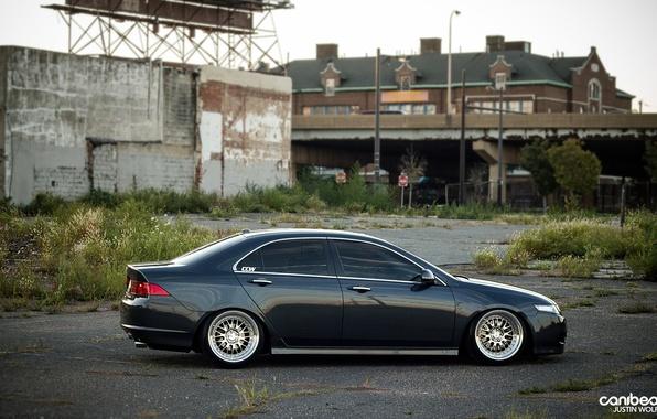 Картинка тюнинг, диски, акура, canibeat, Justin Wolfe, Acura TSX