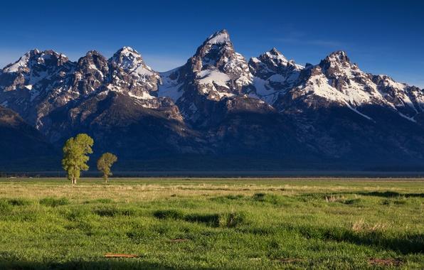 Картинка поле, снег, пейзаж, горы, долина