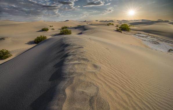 Картинка песок, природа, пустыня, дюны, California, Death Valley, Dunes