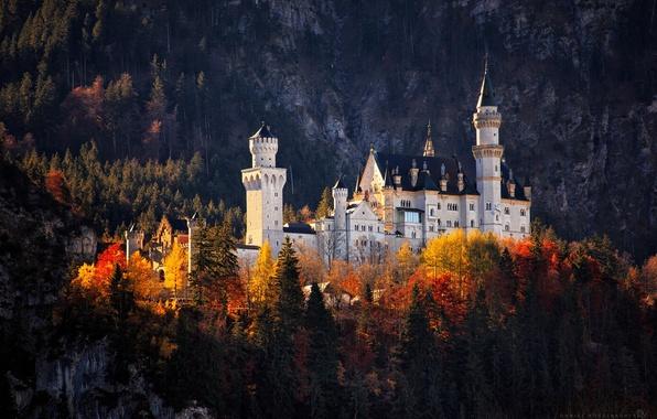 Картинка осень, лес, замок, германия